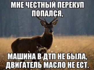 1397140519_avtoprikoly-5