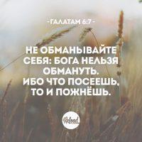 ataaic4cvx0