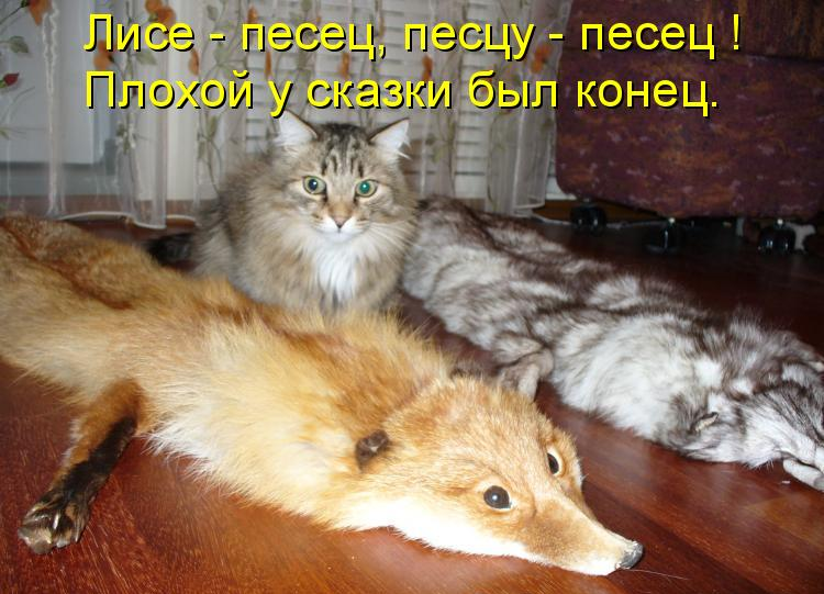 1308541948_kotomatr_15_xoxi.ru