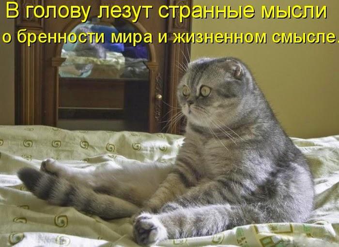 104590164_169860944d533649523m750x740